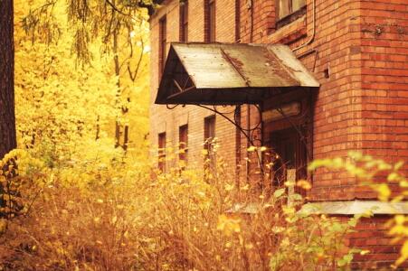 autumn-1180848_640